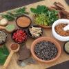 Ayurvedic-Medicine-Manufacturers-In-Chhattisgarh