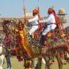 Camel Festival, Bikaner