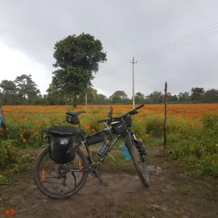 Cycling in South India fields